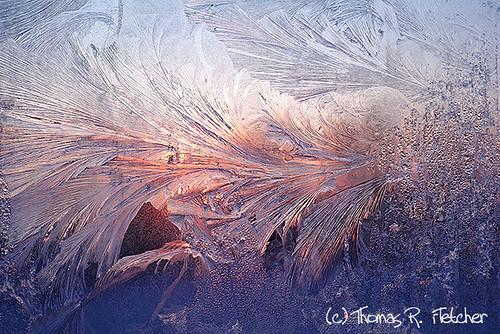 morning winter usa cold ice beauty sunrise dawn virginia solitude frost frosty fresh freeze mysterious windowpane atmospheric newday wintry bej ubej bestcapturesaoi thomasrfletcher