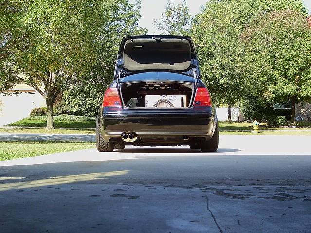 trunk 006