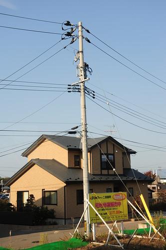akita jp091031