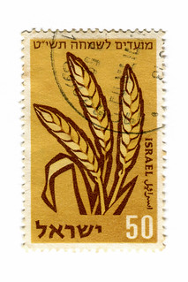 Israel Postage Stamp: wheat
