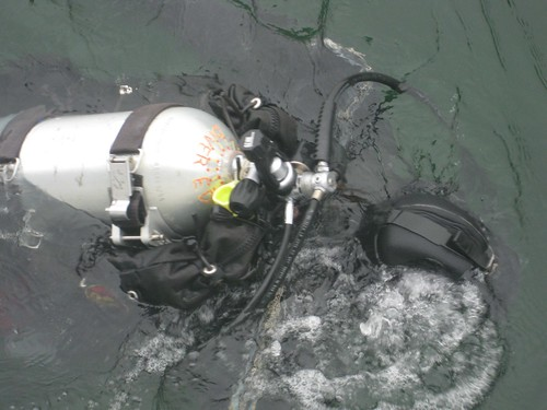Diver Ed - A view from the surface