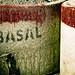 Small photo of Basal