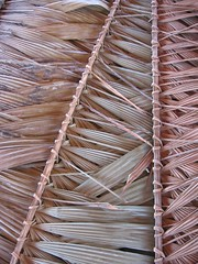 agriculture(0.0), textile(0.0), straw(0.0), wood(0.0), fishing net(0.0), net(0.0), iron(0.0), rope(0.0), weaving(1.0), leaf(1.0), close-up(1.0),