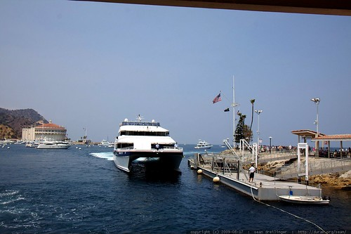 catalina  > long beach ferry    MG 3371