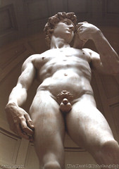 The David (Michelangelo) (1980)