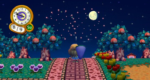 Animal Crossing City Folk Fireworks