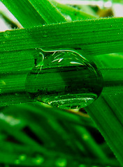 Droplet by pippigar