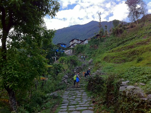 nepal 96