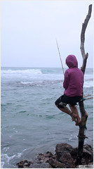 Weligama Stilt Fishing