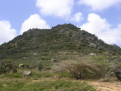 Aruba - Hooiberg
