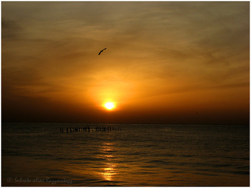 sea beach sunrise canon skyscape daybreak razzmatazz subrata s3is