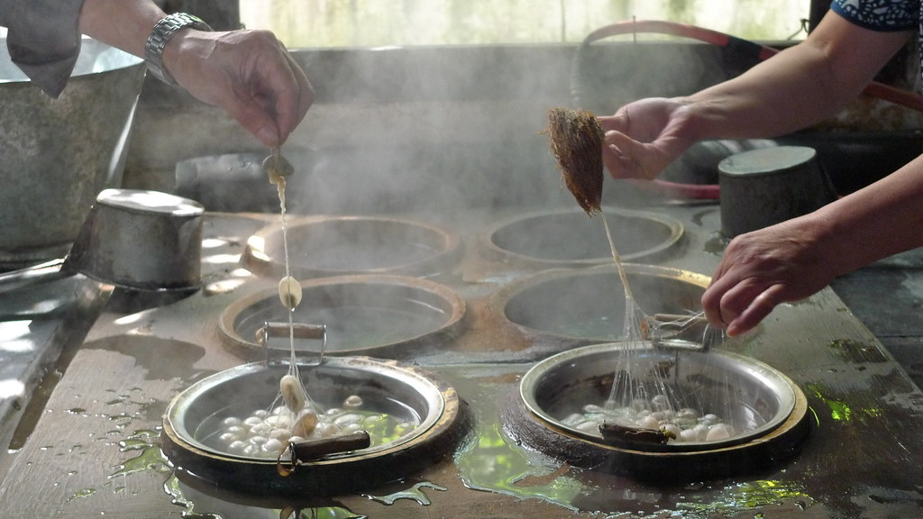 Sericulture - Silk Production in Wuzhen, China