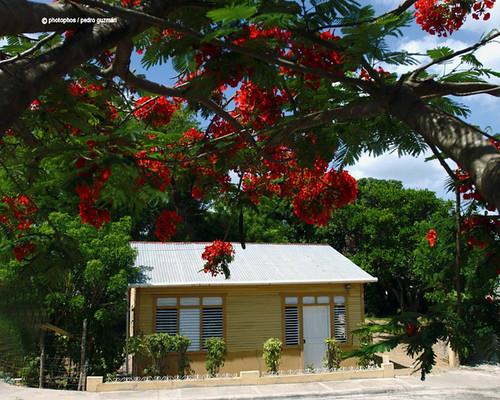 Espaillat dominican republic a gallery on flickr - Casitas de campo ...