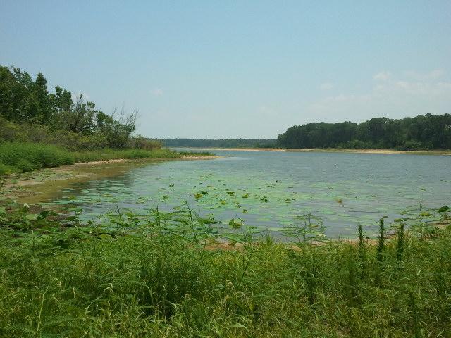 Lake sam rayburn flickr photo sharing for Fishing sam rayburn