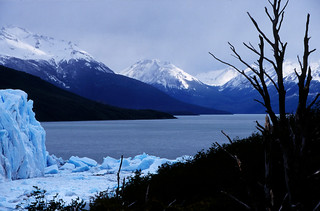 Lighter Violet View of Lake Argentino