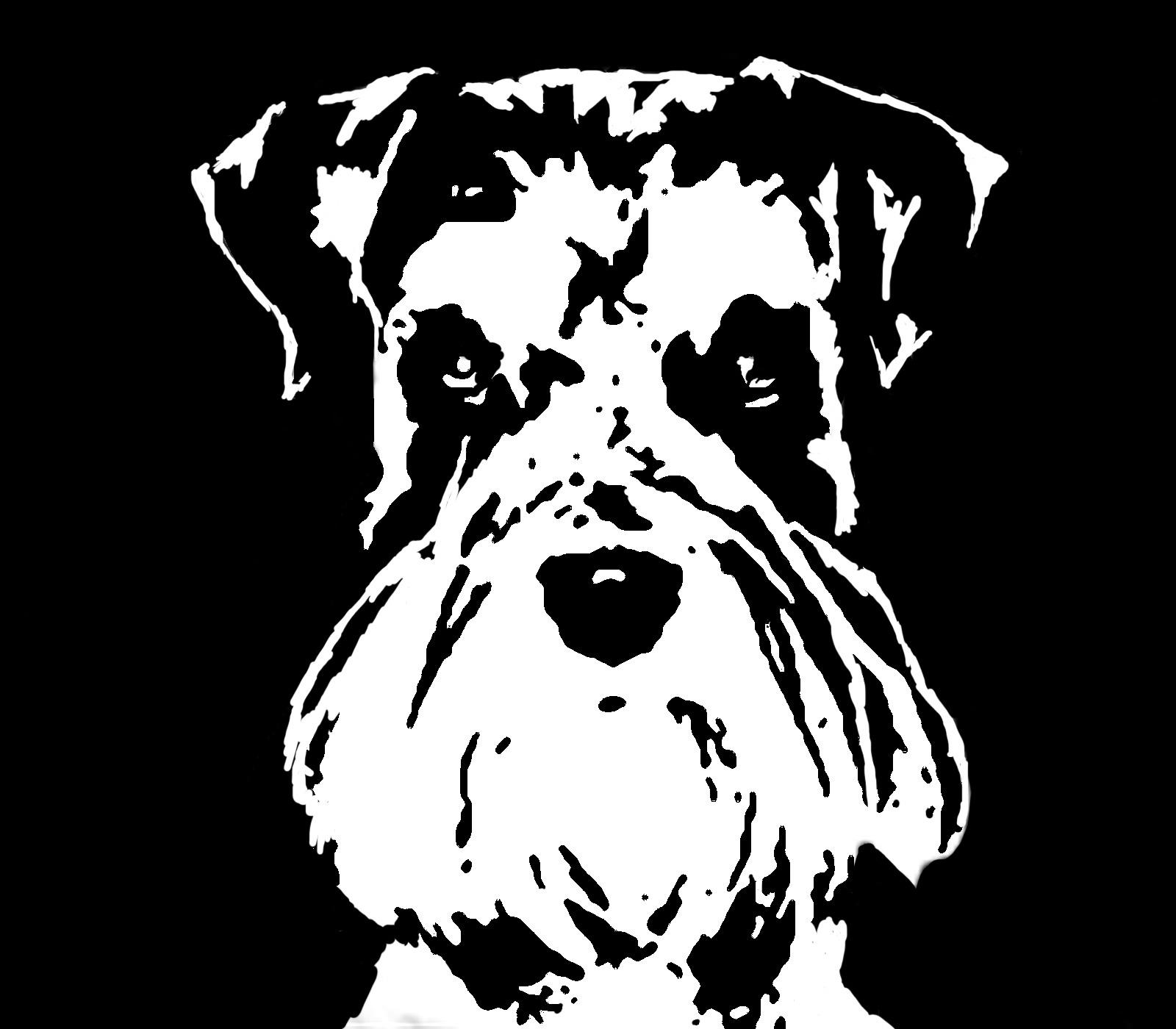 Schnauzer Black & White Stencil Dog Art Print   Flickr ...