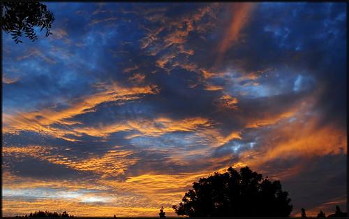 california sunset southern