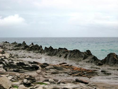 maui, hawaii, vacation, tropical, island, r… IMG_1698