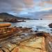 Bird Rock - Point Lobos, California by PatrickSmithPhotography