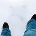 Not 365:66 - Winter Wonderland? by hebedesign