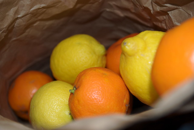 Georgina Ingham | Culinary Travels Photograph - Bag of Seville Oranges and Lemons