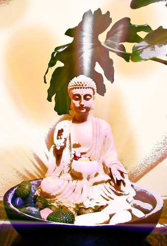 """When asked """"Are you a god or a man?"""" The Buddha replied, """"I am awake."""" by Wonderlane"""