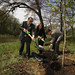 Earth Day Moon Tree Planting (200904220001HQ)