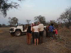 Zambia03SouthLuanga177