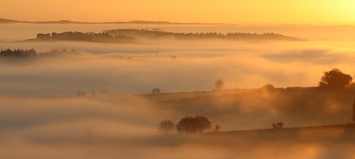 morning winter england mist weather fog rural sunrise devon exe