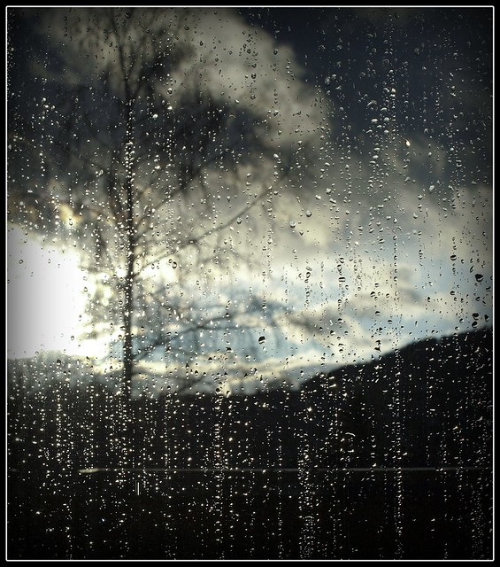 Raindrops on the Window VI