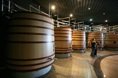 barrel(1.0), winery(1.0),