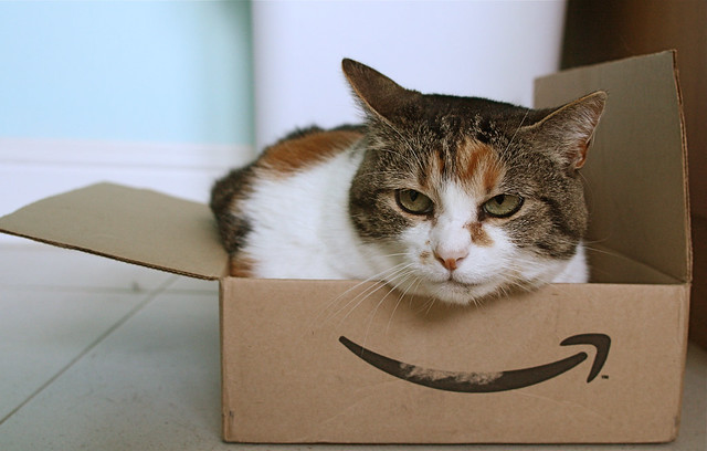 Photo:Amazon cat By:protohiro