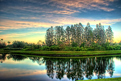 morning blue trees orange white lake reflection green bird water clouds sunrise canon october glow florida cypress hdr lutz 18mm 100iso explored xti pspx2 topazdetail