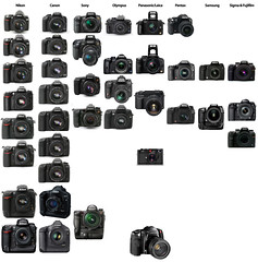 Canon 7D video stills movies