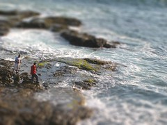 Tilt Shift Fishing