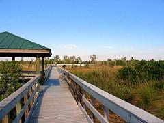Chapel Trail Nature Center, Florida
