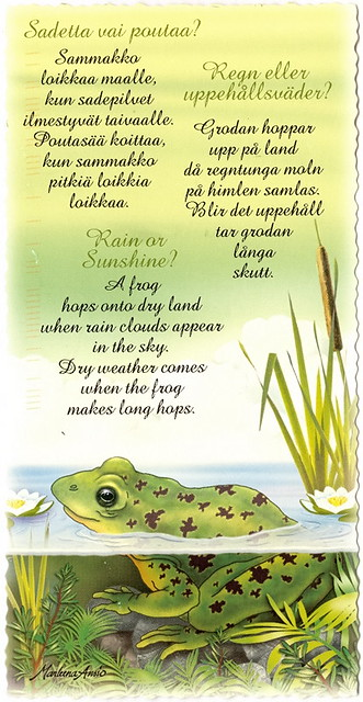 Frogs - Rain or Sunshine, Poem | Flickr - Photo Sharing!