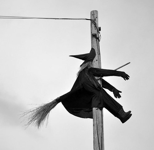 halloween oregon witch humor amity