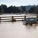 Chehalis Flooding 2009