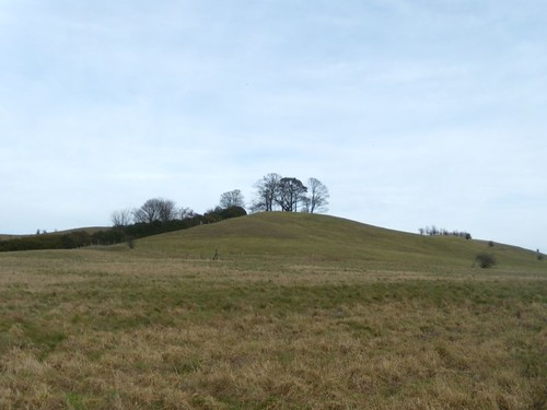 Near Ellesborough