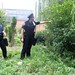 NYPD, gathering healing herbs