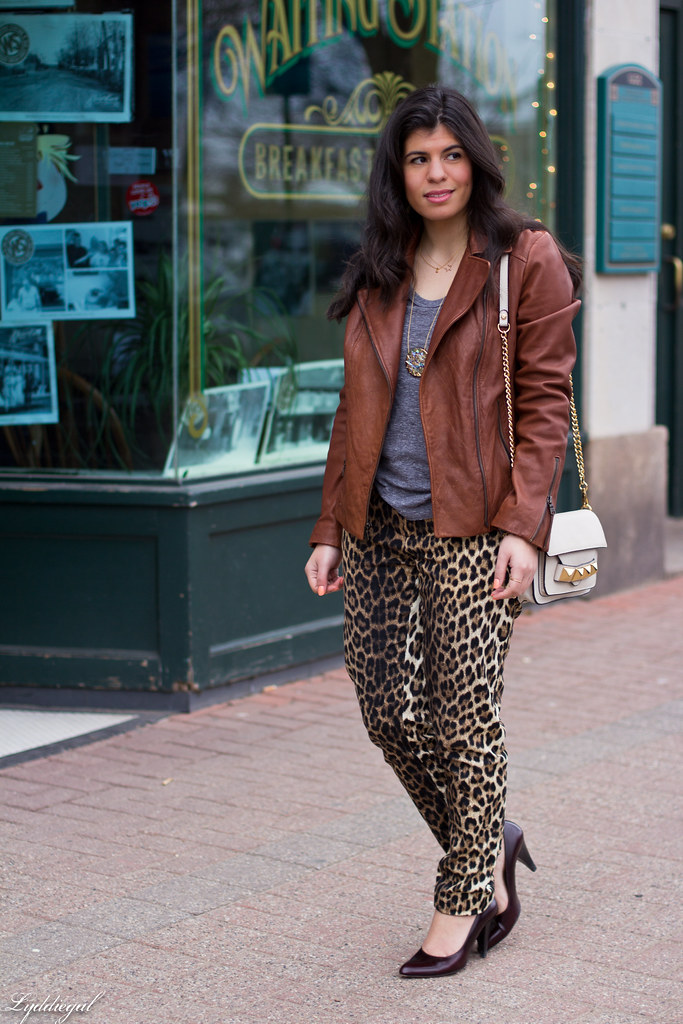 leopard pants, leather jacket-2.jpg