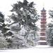 Pagoda vista by earlier