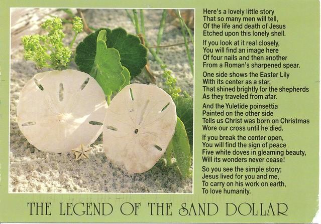 Legend of the sand dollar postcard flickr photo sharing