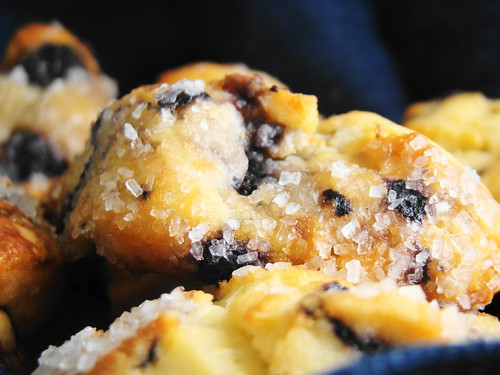 Blueberry Scones | by Vegan Feast Catering