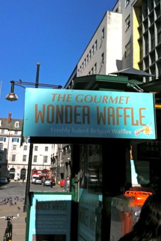 Gourmet Wonder Waffle