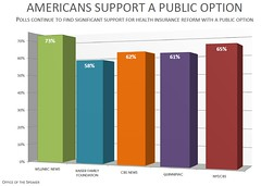 Americans Support A Public Option by Leader Nancy Pelosi