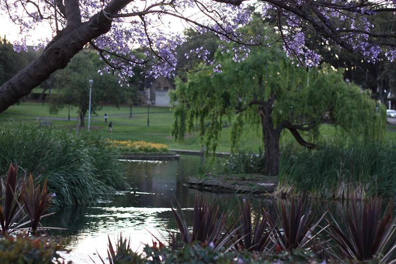 Sydney University Gardens