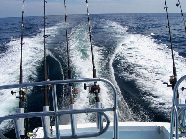 gulf coast deep sea fishing flickr photo sharing