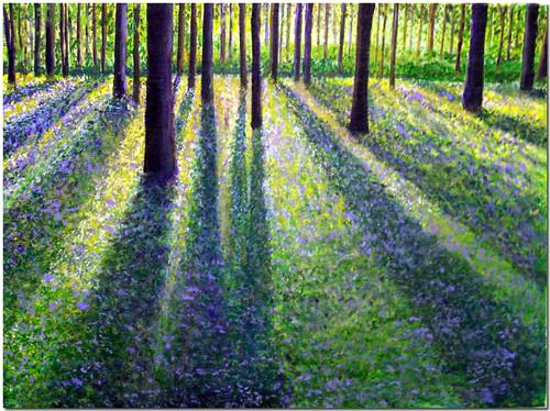 Violet Morning